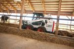 Where to find LOADER BOBCAT S590 in Durango