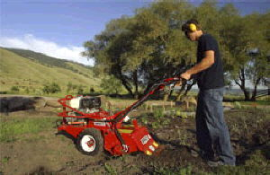 Where to find TILLER, 18 HP BARRETTO REAR-TINE in Durango