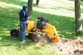 Where to rent STUMP GRINDER in Durango CO